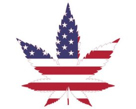 leaf-usa-flag-sm